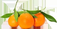 Naranja Blanca