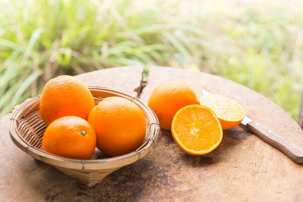 La naranja Navelate, la mejor del mundo