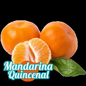mandarina suscripción quincenal