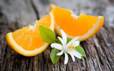 Descubre la Flor de Azahar y sus Propiedades
