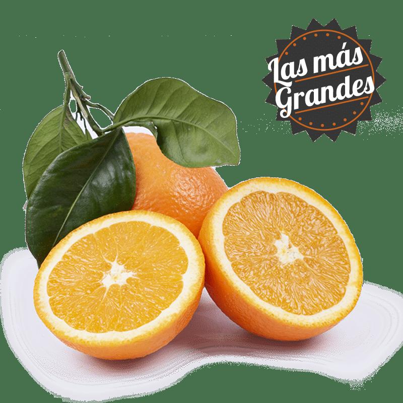 naranjas mesa calibre superior