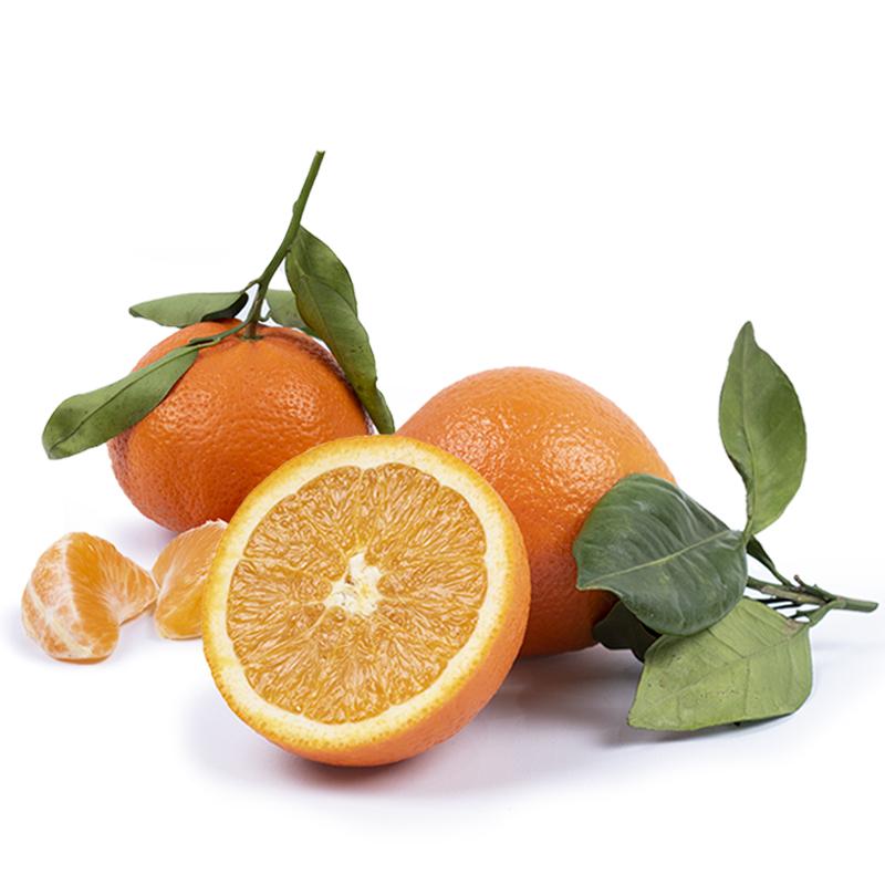 naranjas de zumo