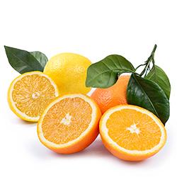 Pack Naranjas de Mesa y Limón