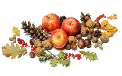 Frutas de Otoño: Vitaminas y Sabor Especiales