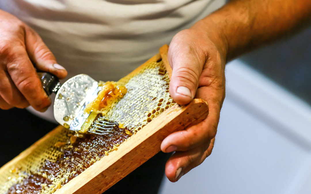 7 Propiedades de la Miel: Dulzor Natural