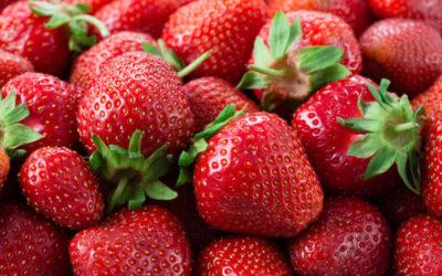 ¿Quieres Saber Cuando es la Temporada de Fresas?