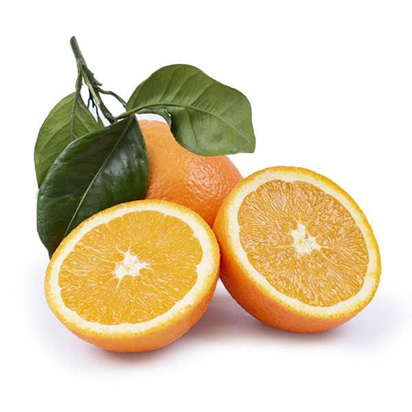 Variedades de Naranjas