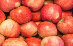 Conoce Todos los Tipos de Manzanas que existen 1